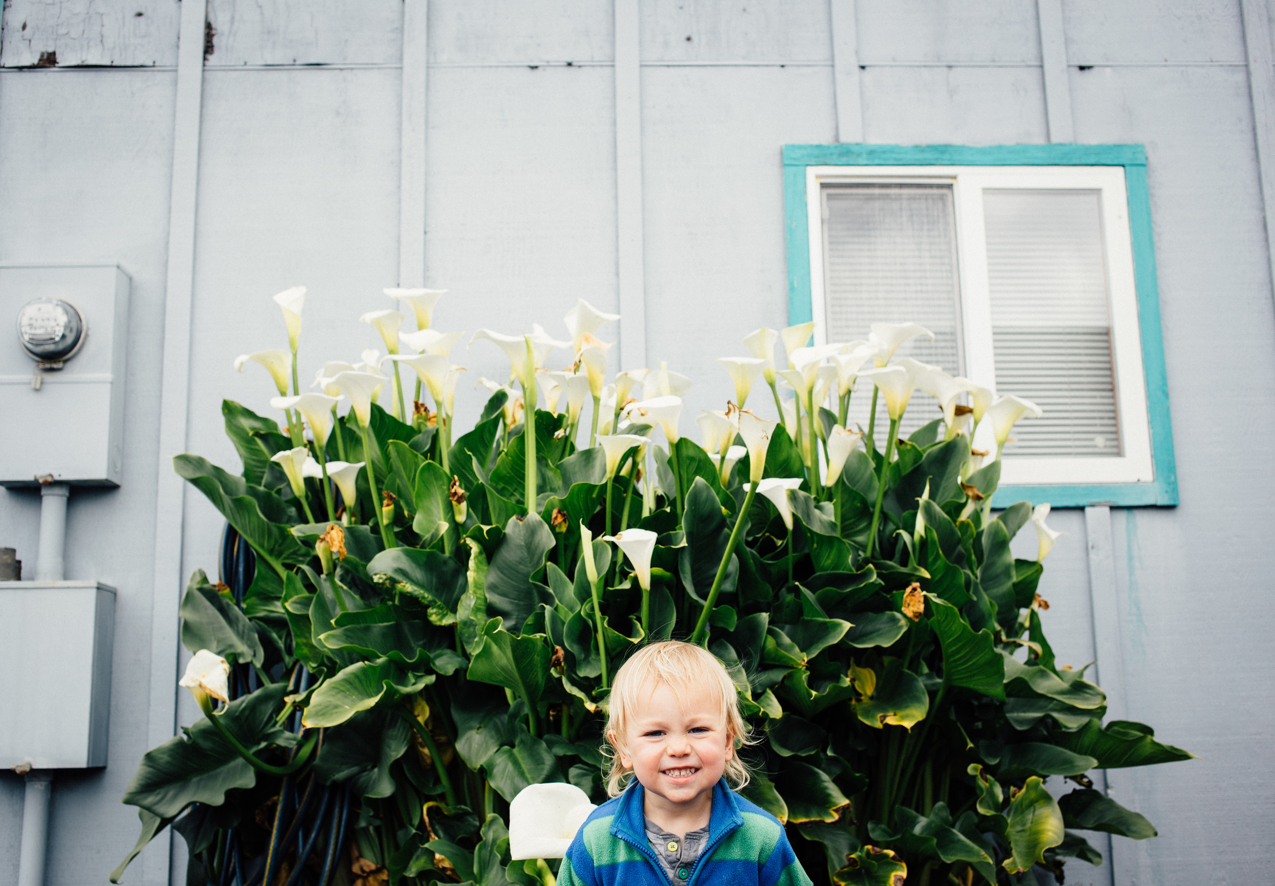 dogwoodphotography_family_child_roadtrip2015-7.jpg