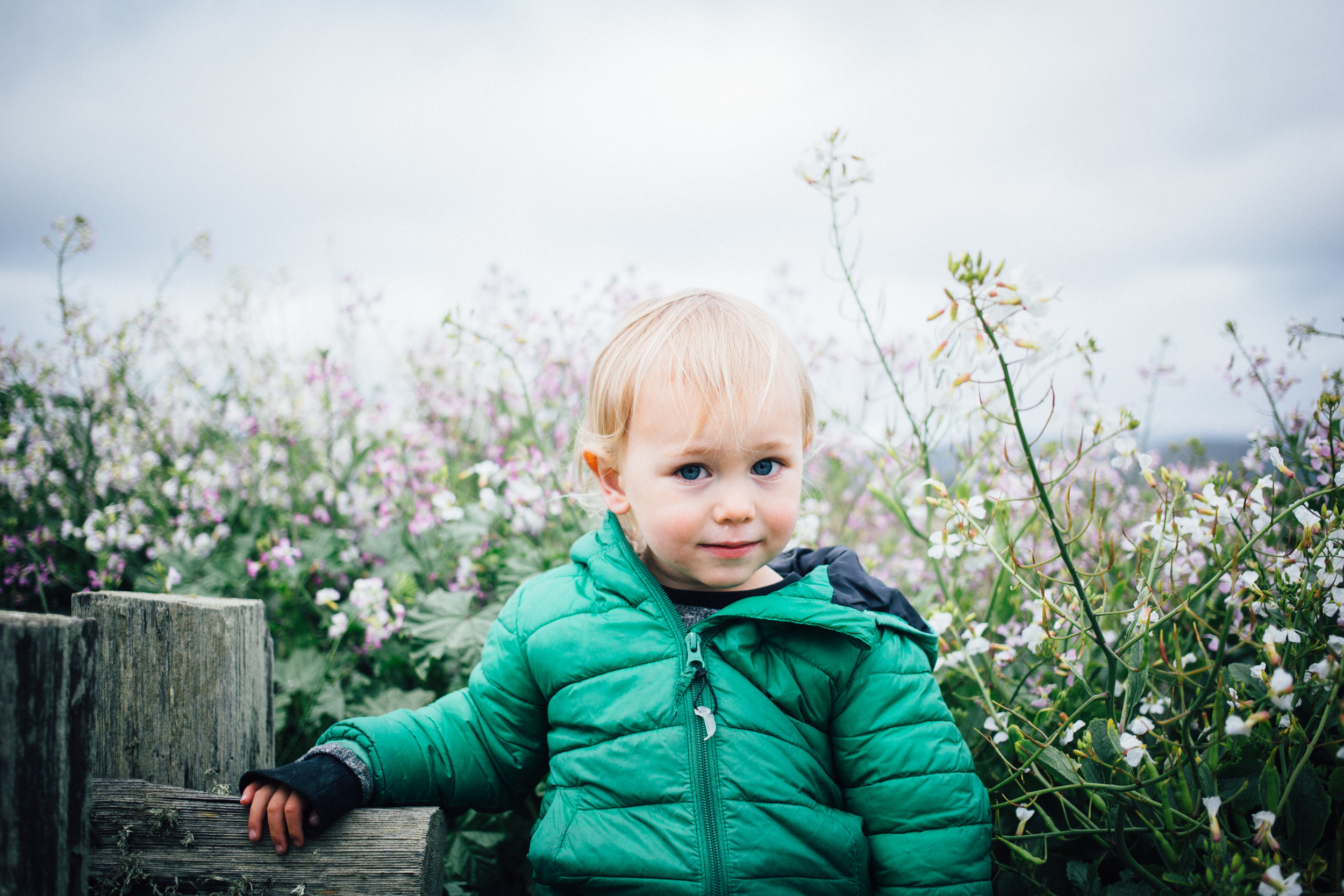 dogwoodphotography_family_child_roadtrip2015-55.jpg