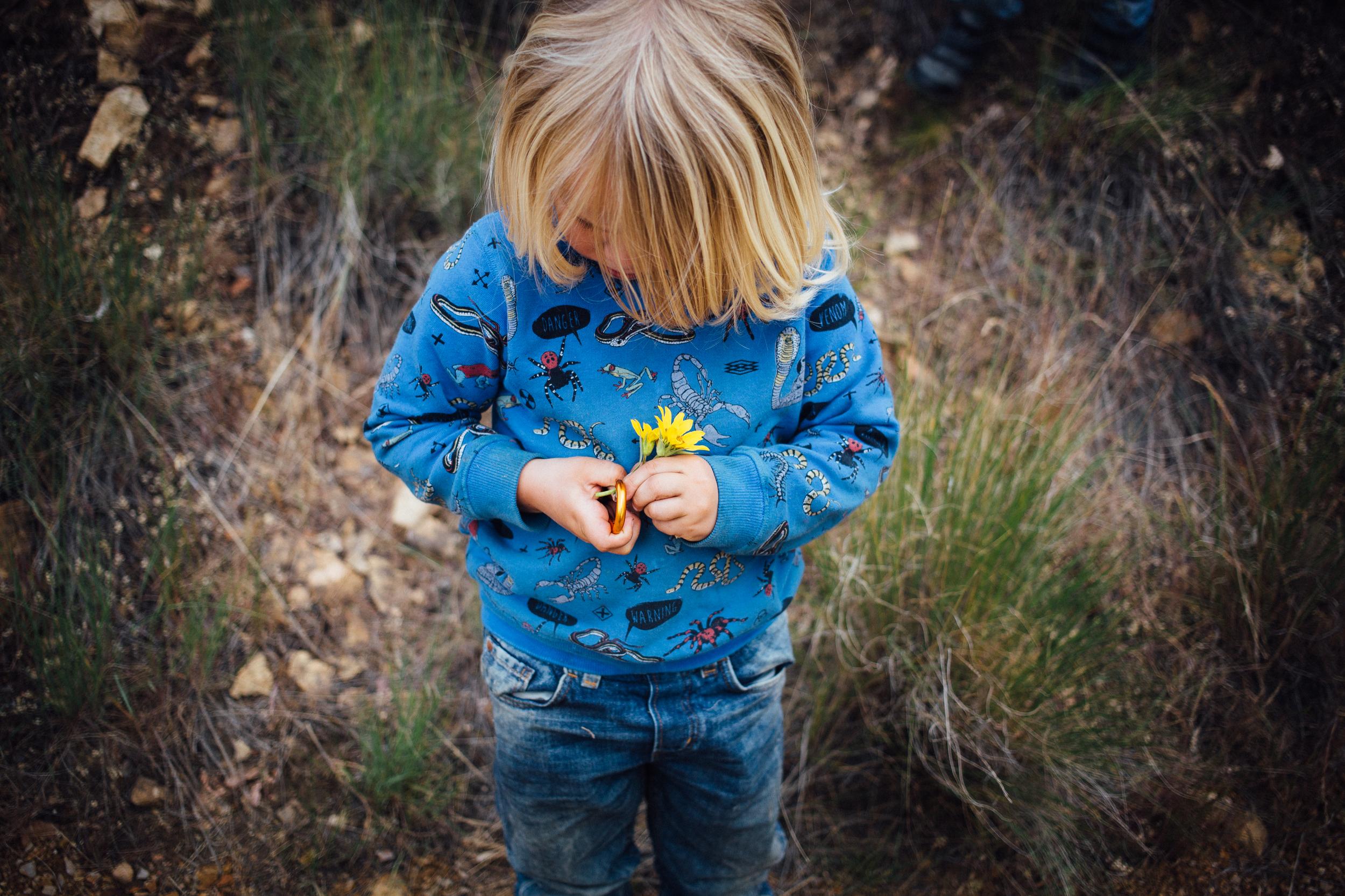 dogwoodphotography_family_child_roadtrip2015-117.jpg