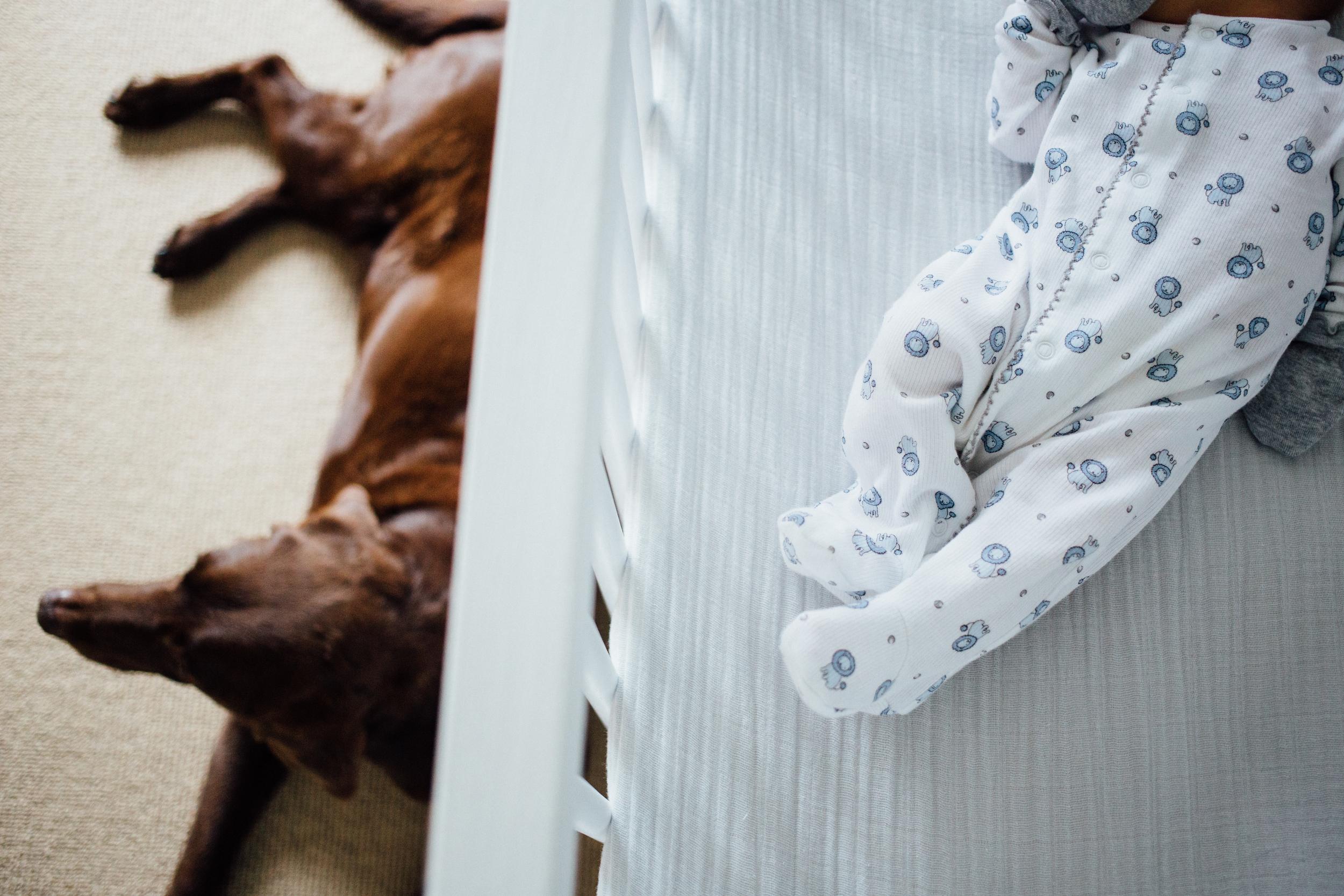 dogwoodphotography_photographer_vancouver_family_newborn_babytyler-23.jpg