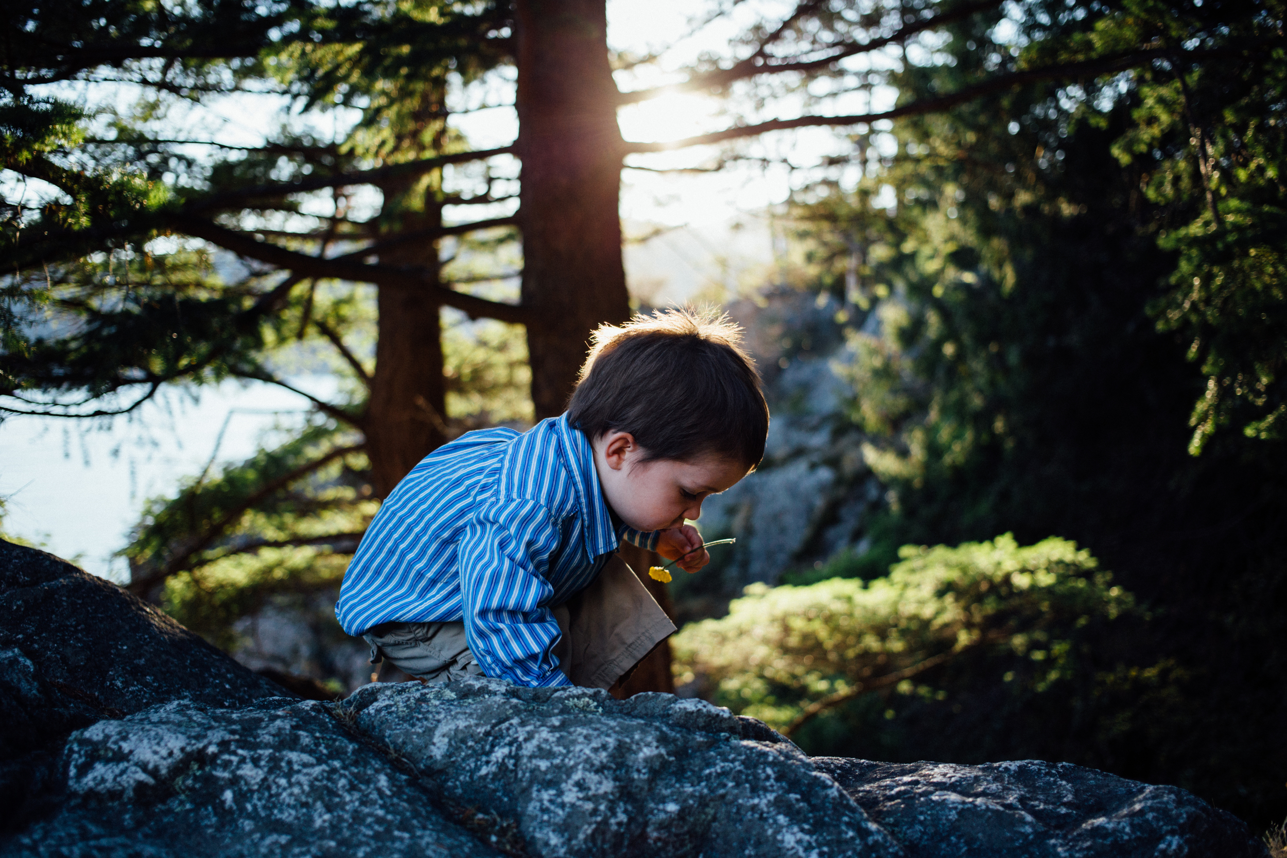 dogwoodphotography_photographer_north_vancouver_child_family_dykemafamily-36.jpg