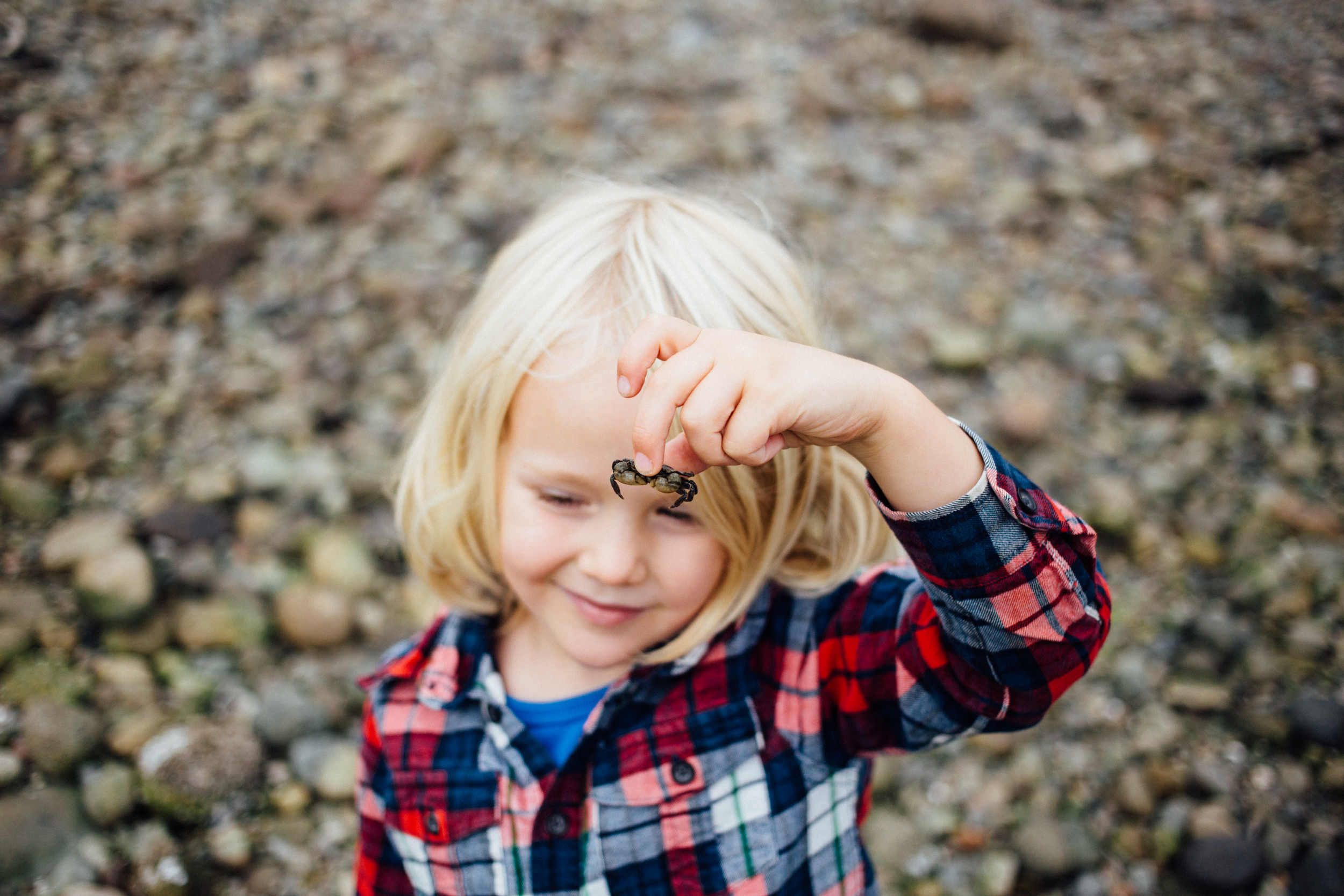 dogwoodphotography_photographer_north_vancouver_child_family_wildbird-2.jpg