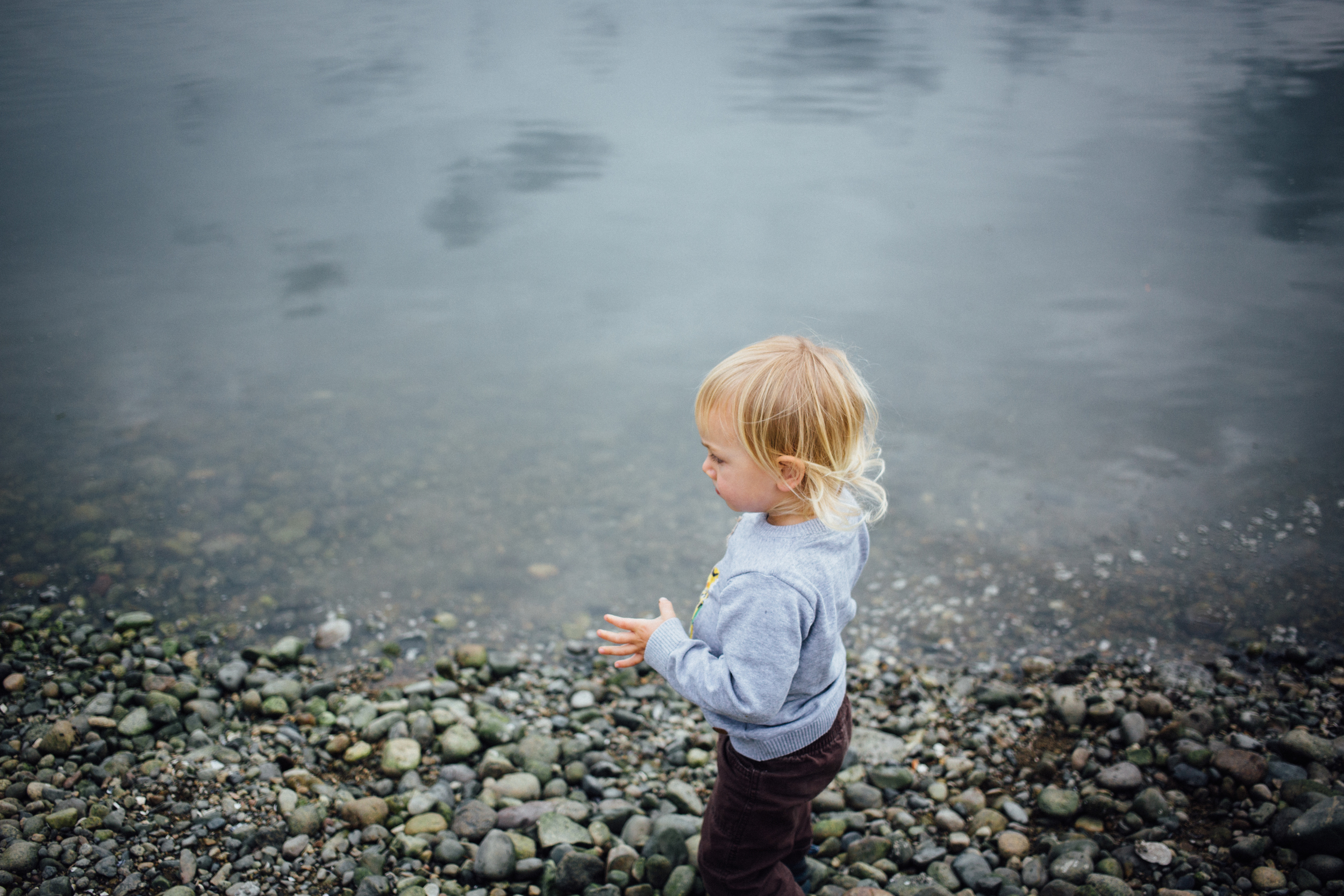 dogwoodphotography_photographer_north_vancouver_child_family_wildbird-4.jpg