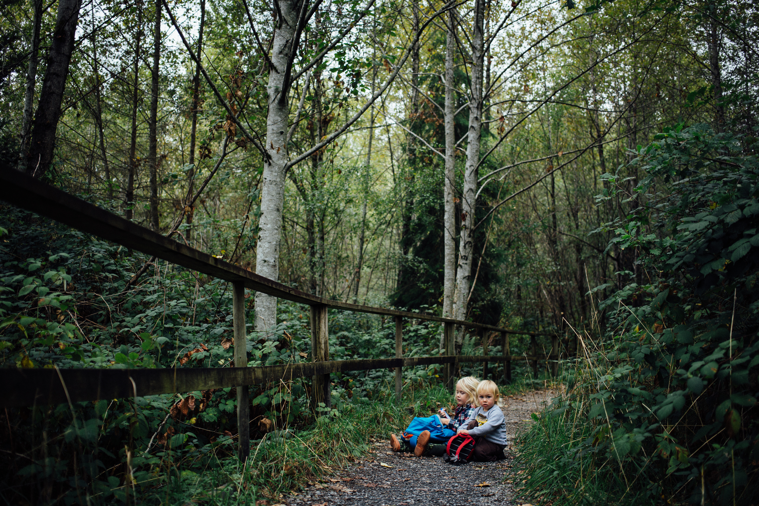 dogwoodphotography_photographer_north_vancouver_child_family_wildbird-13.jpg