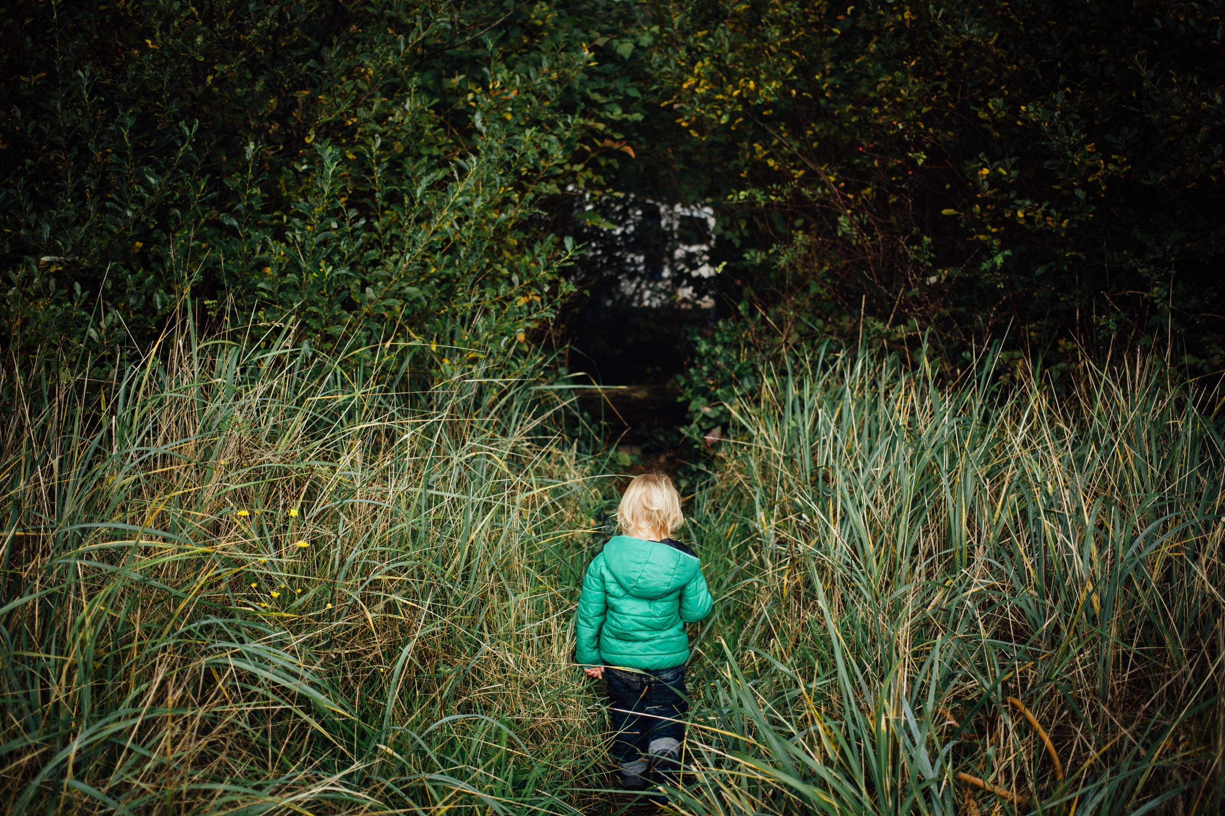 dogwoodphotography_photographer_vancouver_family_fallcamping-5.jpg