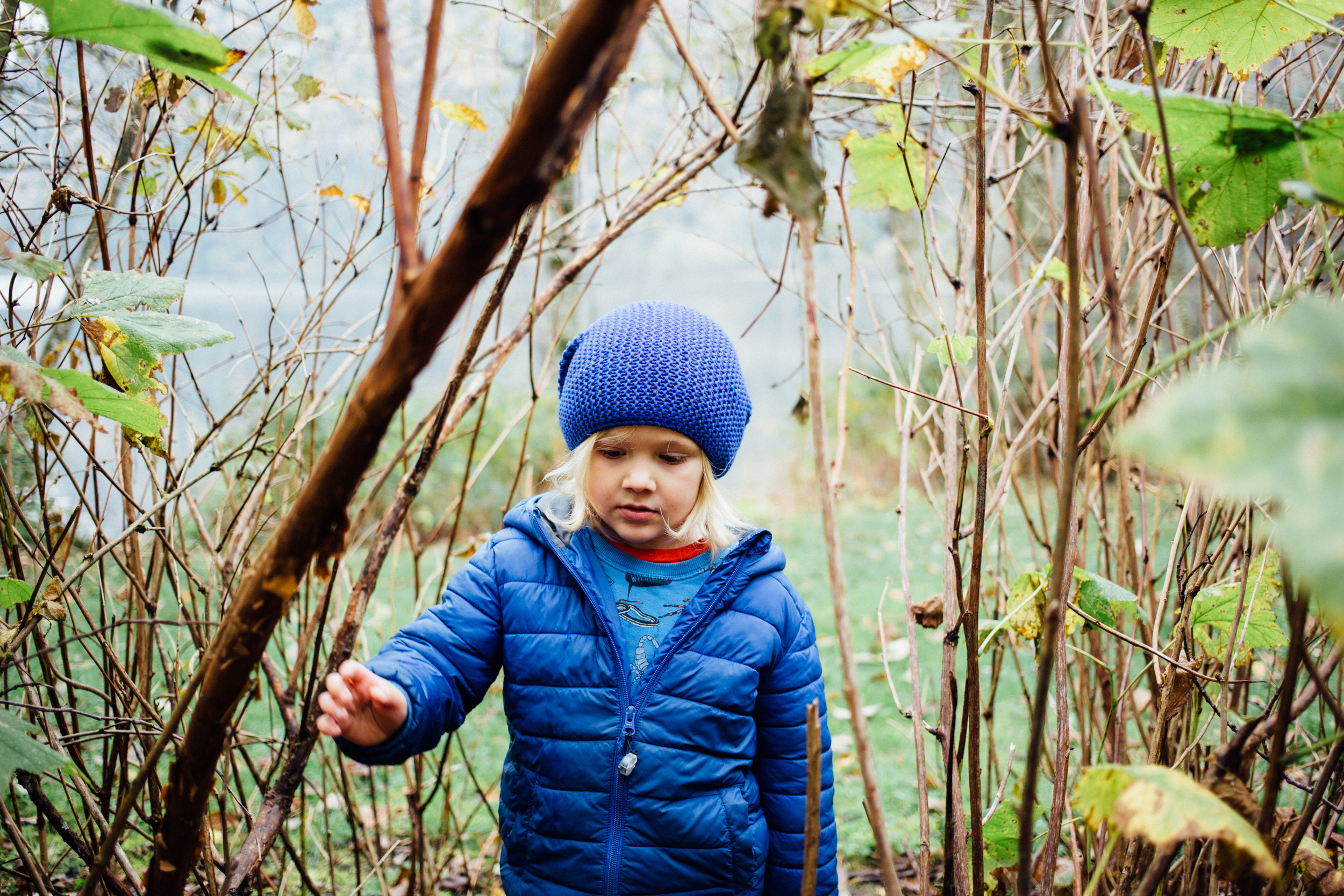 dogwoodphotography_photographer_vancouver_family_fallcamping-15-2.jpg