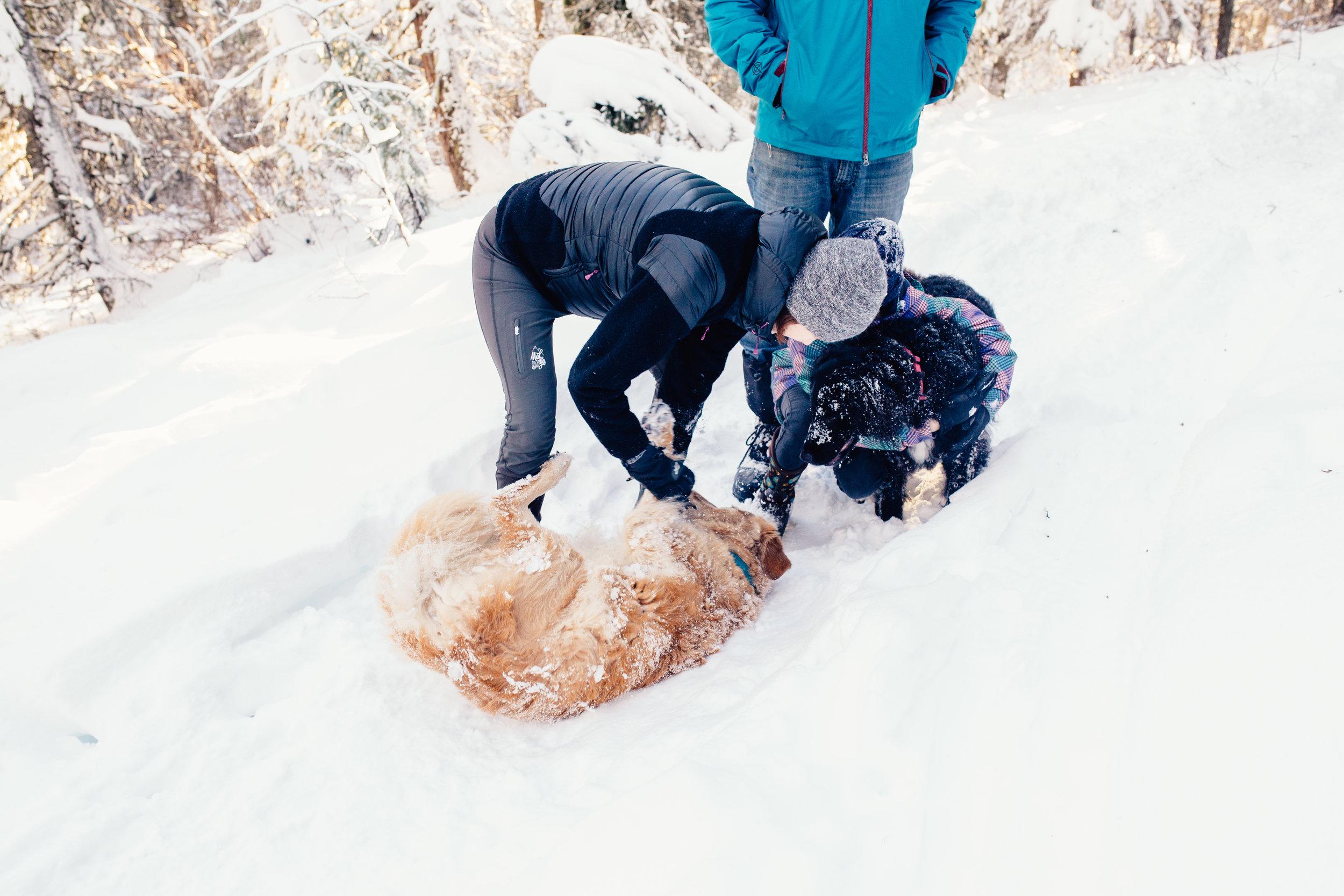 dogwoodphotography_westkootenay_photographer_family_rossland_fosterfamily-44.jpg