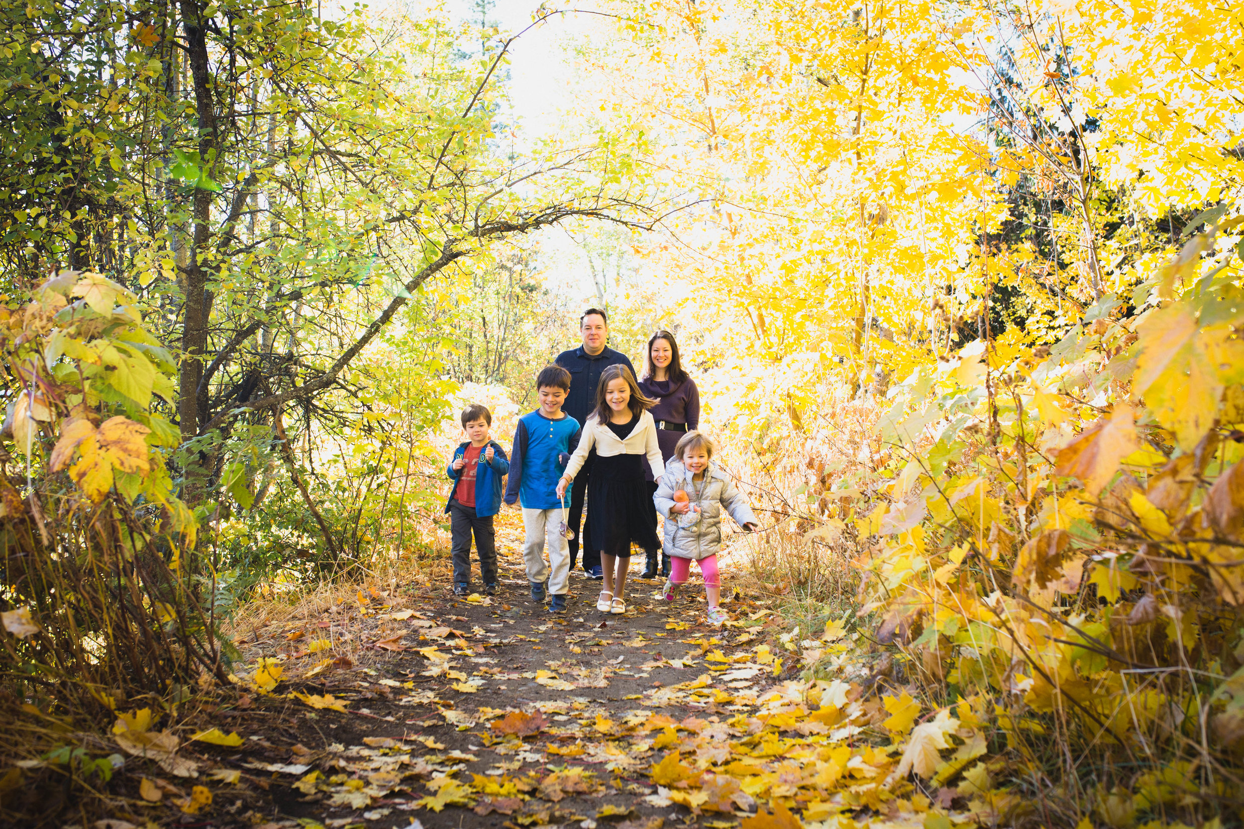dogwoodphotography_kootenay_photographer_family_therecchifamily.jpg--8.jpg