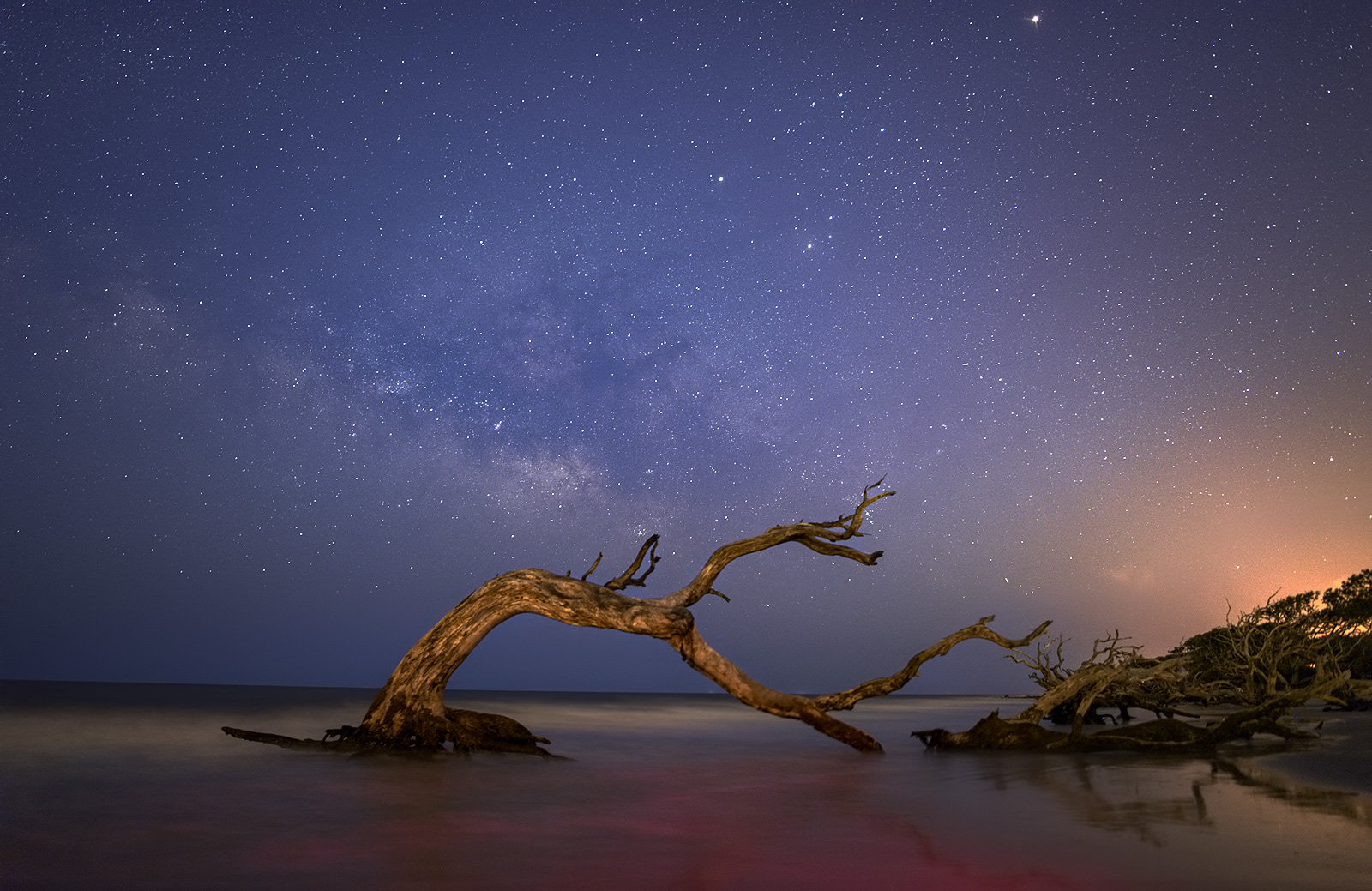 Taken at Driftwood Beach, towards the north section of Jekyll Island, Georgia. Taken towards the end of blue hour, with the Milky Way just about showing up.