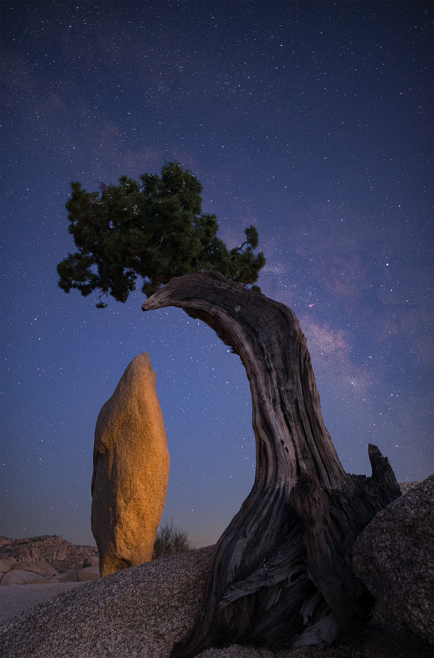 Final Image of The Juniper, Monolith & Milky Way.