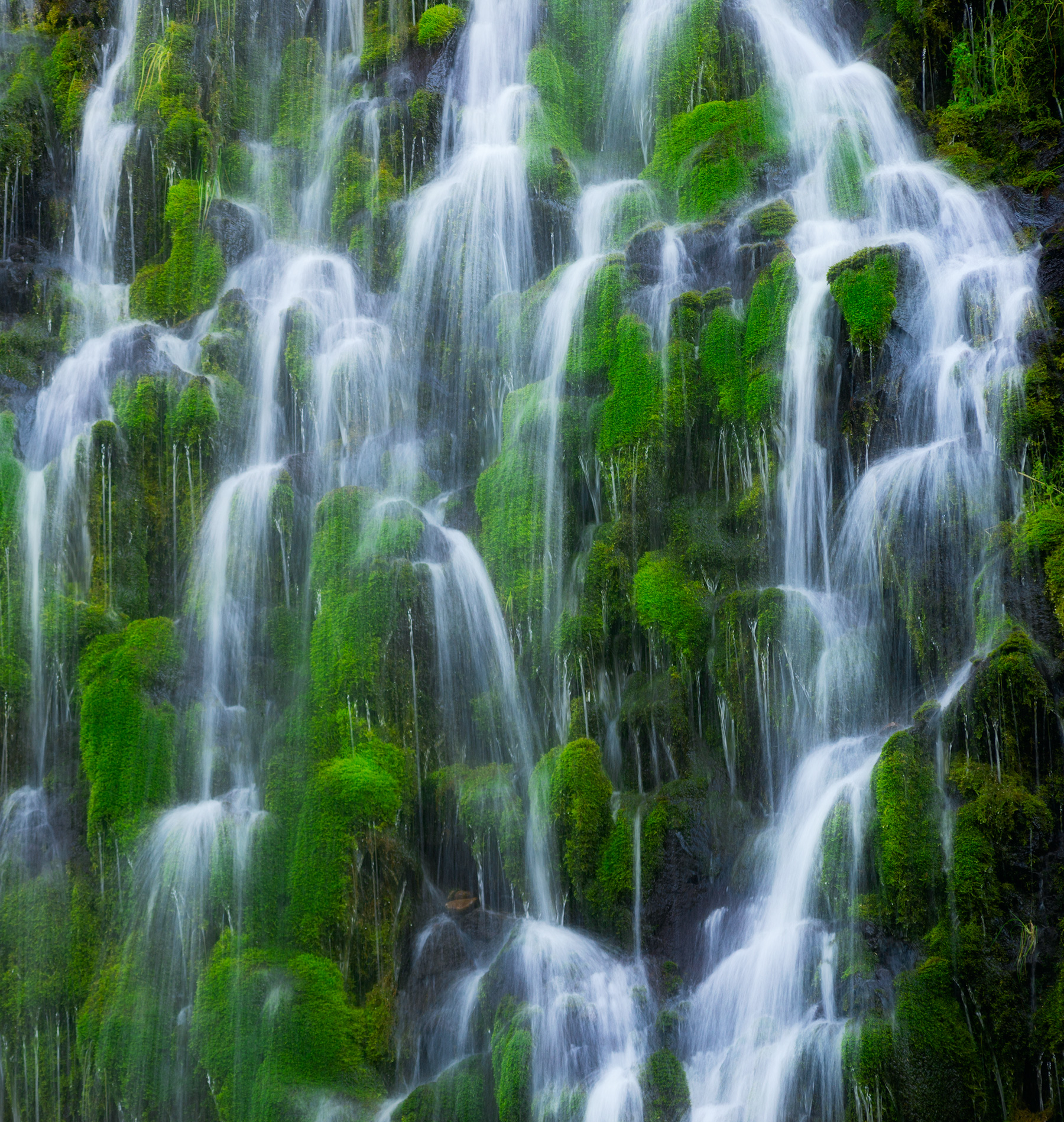 Cascading Mossbrae Falls.