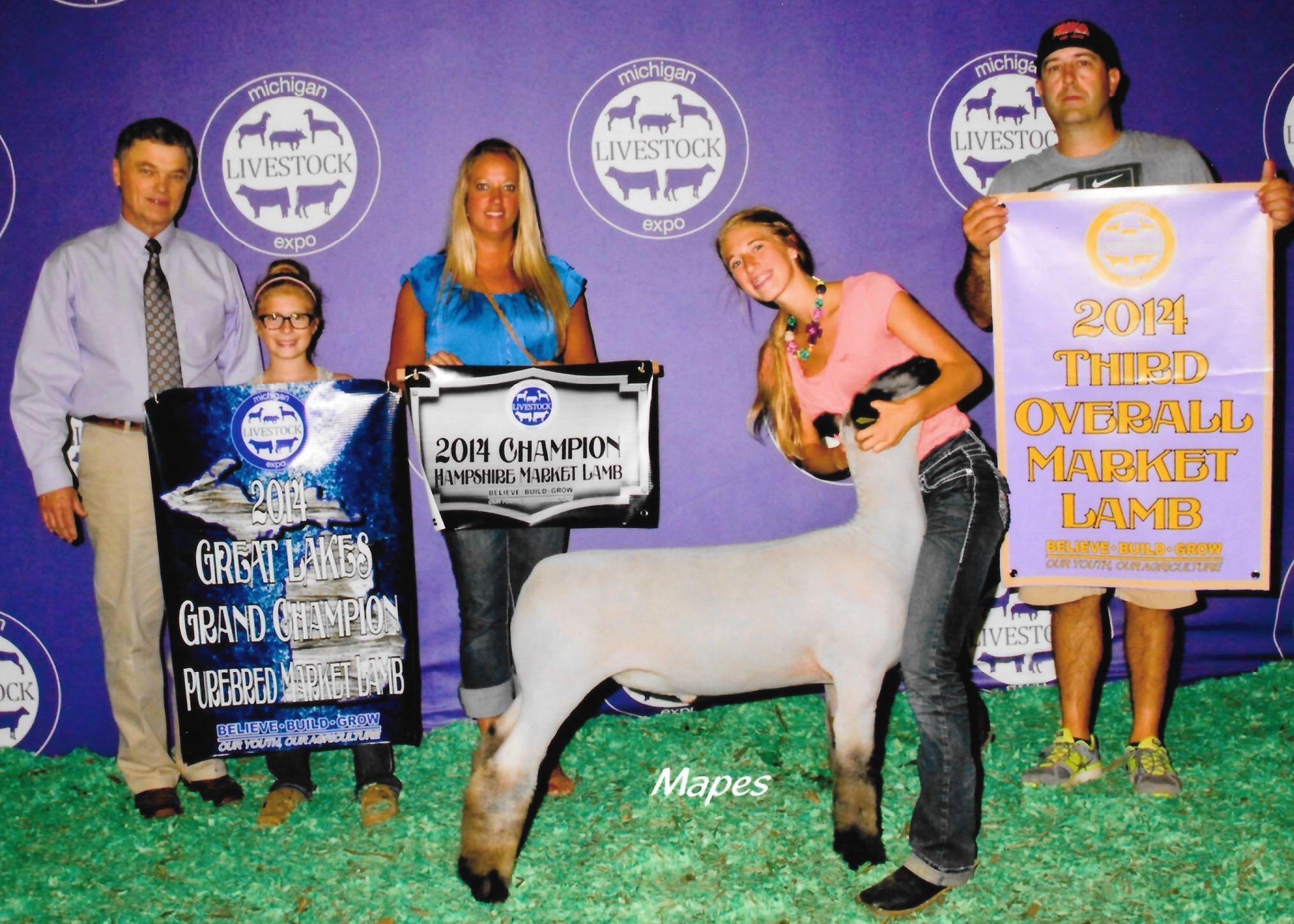 Grand Champion Hampshire - 2014 Michigan Livestock ExpoSire: True Classic Dam: WH 8-075Showman: Maddy Stewart