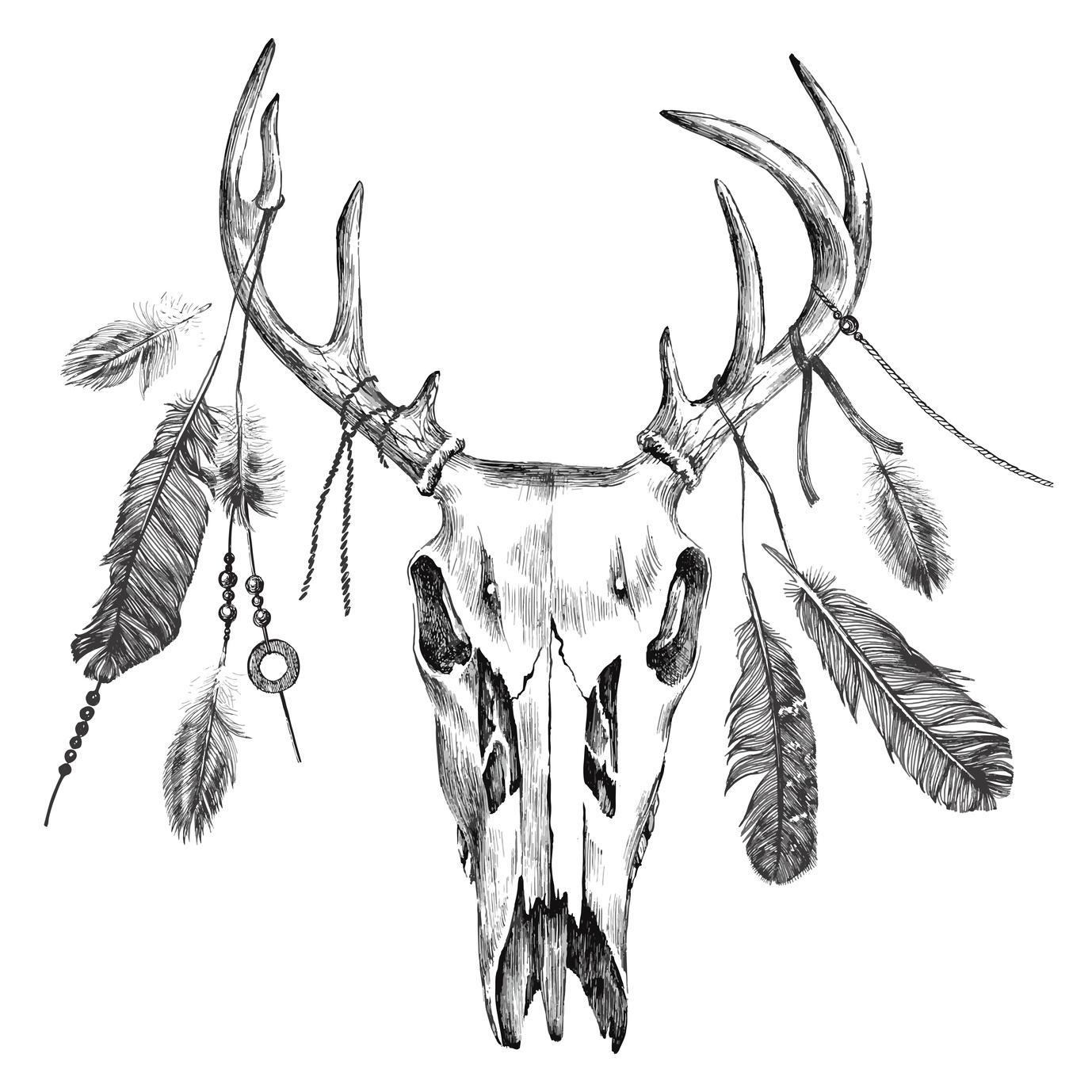 feathers deer skull