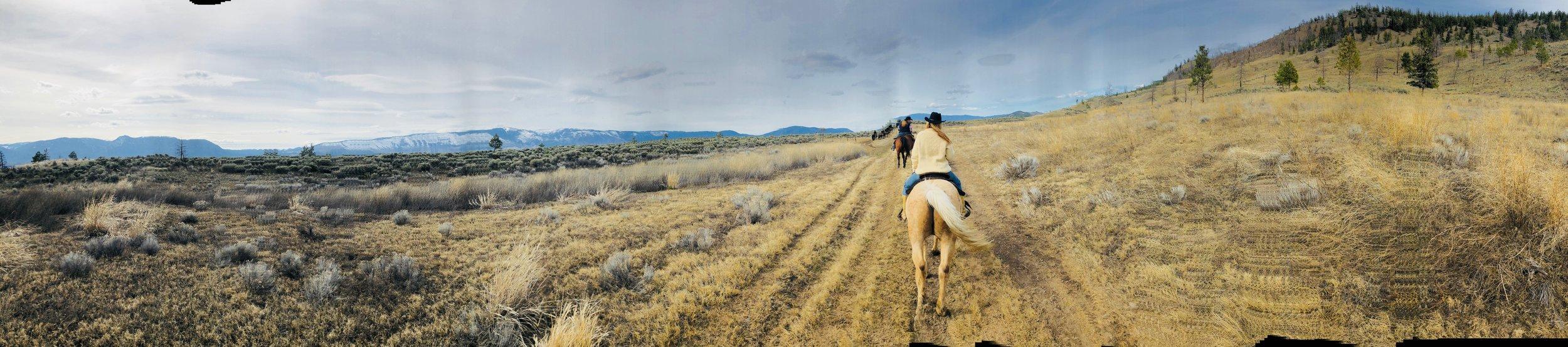 Soulful Entrepreneur Retreat horseback riding.jpg