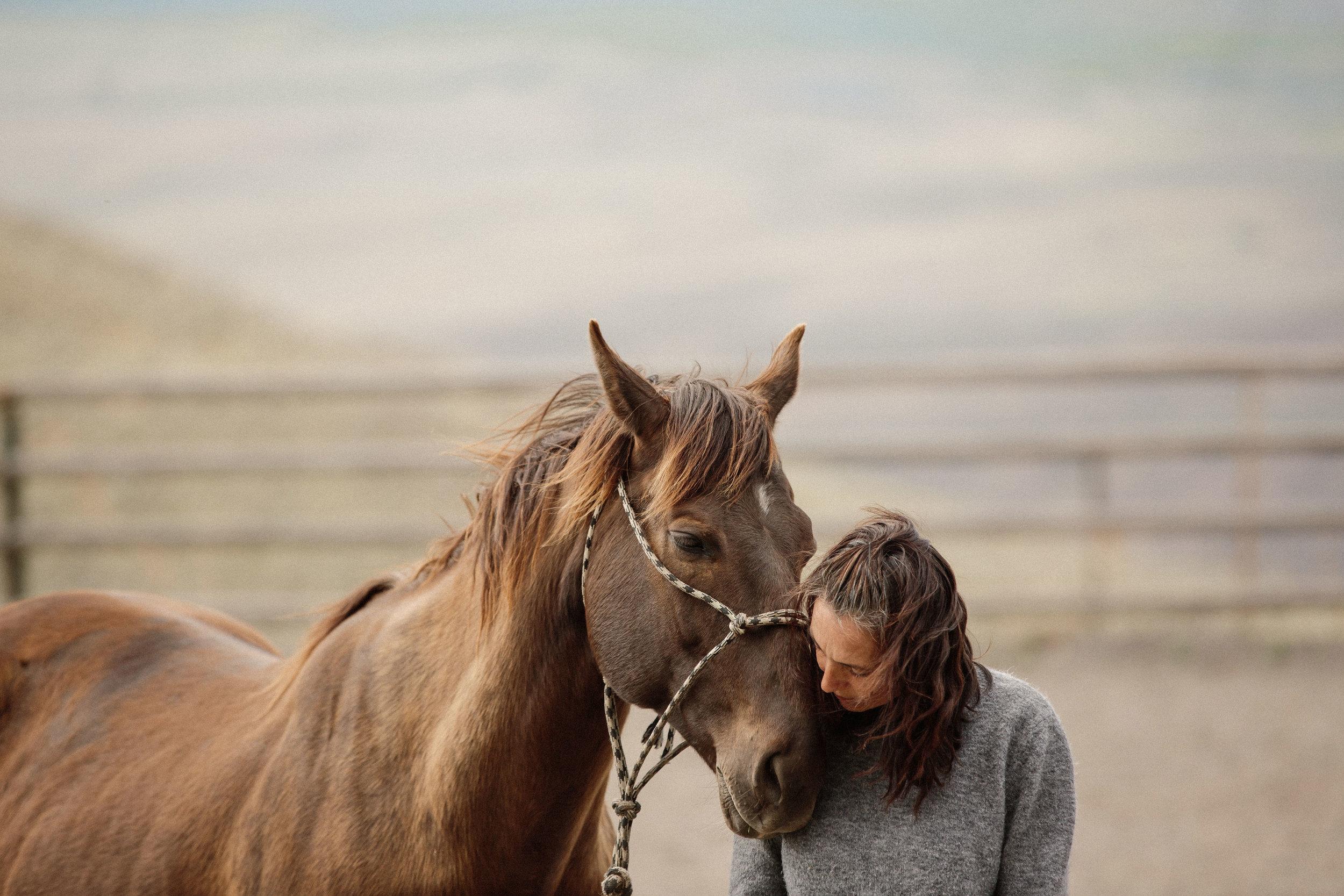 Animal Communication Retreat.jpg