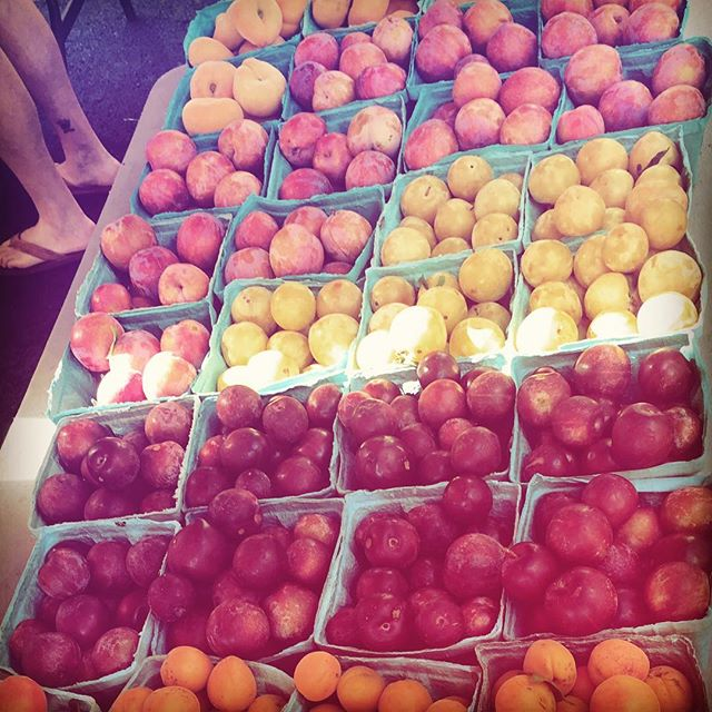 Come see the rainbow of plums @arlfoodworks @communityfoodworks @toigoorchards #farmersmarketweek #eatclean #supportlocal #eathealthy #farmers #famersmarket #plums