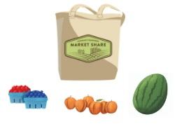 SG+Fruit+_+Sample+Market+Share.jpg