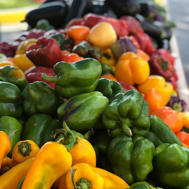 Locally grown peppers of every shape and color 🌈! They are great for stuffing, salsa, stir fry and so much more! Ask your farmer to help you find the perfect pepper to meet your needs.