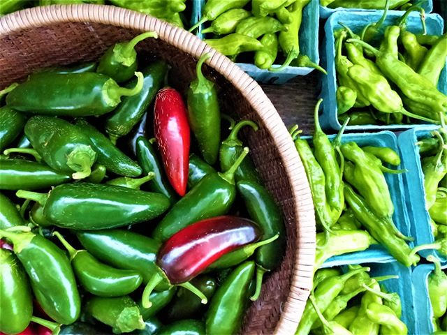 YOUR WEEKLY MARKETS NEWS! Stop by Sundays 10-2! Summer is winding down, and fall crops have begun to arrive. It's pepper time at market -- sweet or spicy we have a pepper for everyone! See you tomorrow! #buyfreshbuylocal #vagrown #localfarmer #summerproduce #farmersmarket #eatlocal #belocal #shoplocal #buylocal #supportlocal #farmfresh #nova #farmersmarket #farmer #organic @communityfoodworks  Check out our weekly newsletter for details - https://mailchi.mp/cfwdc.org/gainesvillesummer-2673937