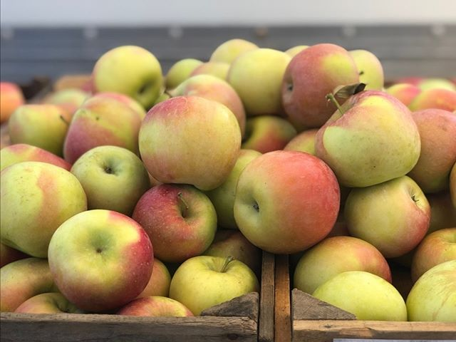 YOUR WEEKLY MARKET NEWS! Stop by market tomorrow 9-1 for local produce, beef, eggs, baked goods and more! Fall apples have arrived at market. Stop by Tysons Farm for a taste! See you soon!  Check out our weekly newsletter to learn more - https://mailchi.mp/cfwdc.org/happyspring-2673977  #buyfreshbuylocal #vagrown #localfarmer #summerproduce #farmersmarket #eatlocal #belocal #shoplocal #buylocal #supportlocal #farmfresh #nova #farmersmarket #farmer #organic @communityfoodworks