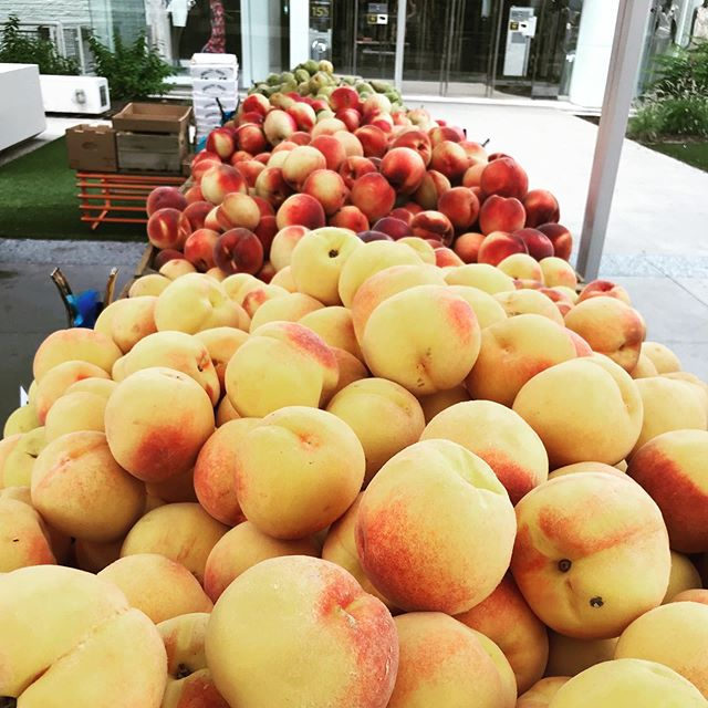 Fall is almost here! Today's the last day @tysonfarms will have peaches for the rest of the season so stop by and stock up! We're open today from 10-2 on the Plaza . . . @communityfoodworks @tysonspartnership #farmersmarket #vafarmersmarket #shoptysons #shoplocal #supportlocal #mcleanva #tysonscorner #peaches #fall