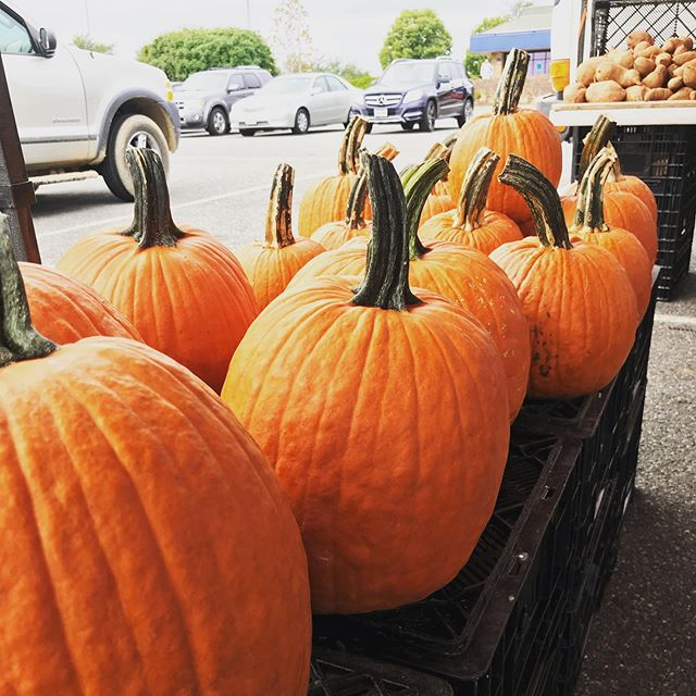 It's pumpkin season here at the market. Stop by today for some pumpkin twist bread from @sweetcups24 and other fall treats! . . . #farmersmarket #vafarmersmarket #springfieldva #springfieldtwncntr #pumpkin #fall #shoplocal #supportlocal #shopseasonal