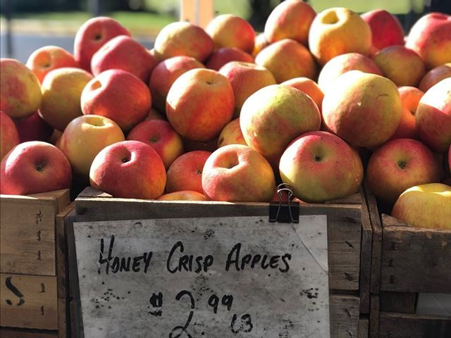 YOUR WEEKLY MARKET NEWS! Tysons is open Sundays 10-2 through November 24th so stop by to enjoy the fall bounty! Chilanga will be out this week, but Hedzole Afroeats will be there serving up west African cuisine! The kids from Bach 2 Rock school will be at market this week to play some tunes. - https://mailchi.mp/cfwdc.org/your-weekly-market-news-wednesdays-3-7pm-2674101  #buyfreshbuylocal #vagrown #localfarmer #summerproduce #farmersmarket #eatlocal #belocal #shoplocal #buylocal #supportlocal #farmfresh #nova #farmersmarket #farmer #organic @communityfoodworks