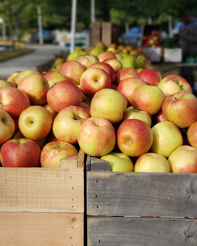 Fall is officially here🍂🍁 And we just love the fresh apples and apple cider from Tyson Farms! Swing by the Oakton Farmers Market today and grab some. We are here from 9am - 1pm year-round.