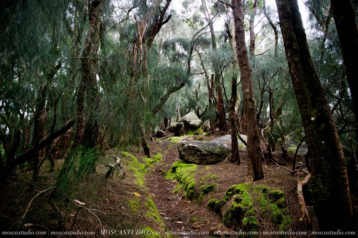 2598-MoscaStudio-travel-photography-Maui-hawaii-travel-molokai-travel-20151014-SOCIALMEDIA.jpg
