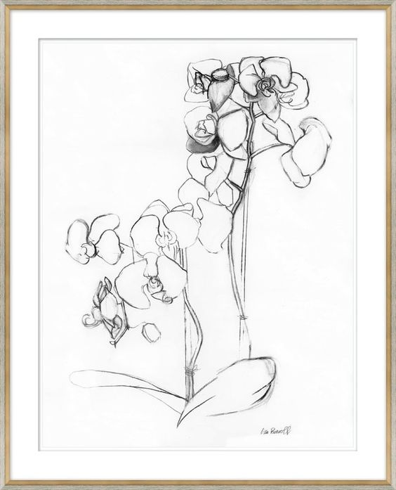 Soicher-Marin 'Orchid Studies' Framed Drawing Print, found  here