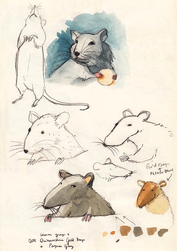 Rat_Study_MLSEE.png