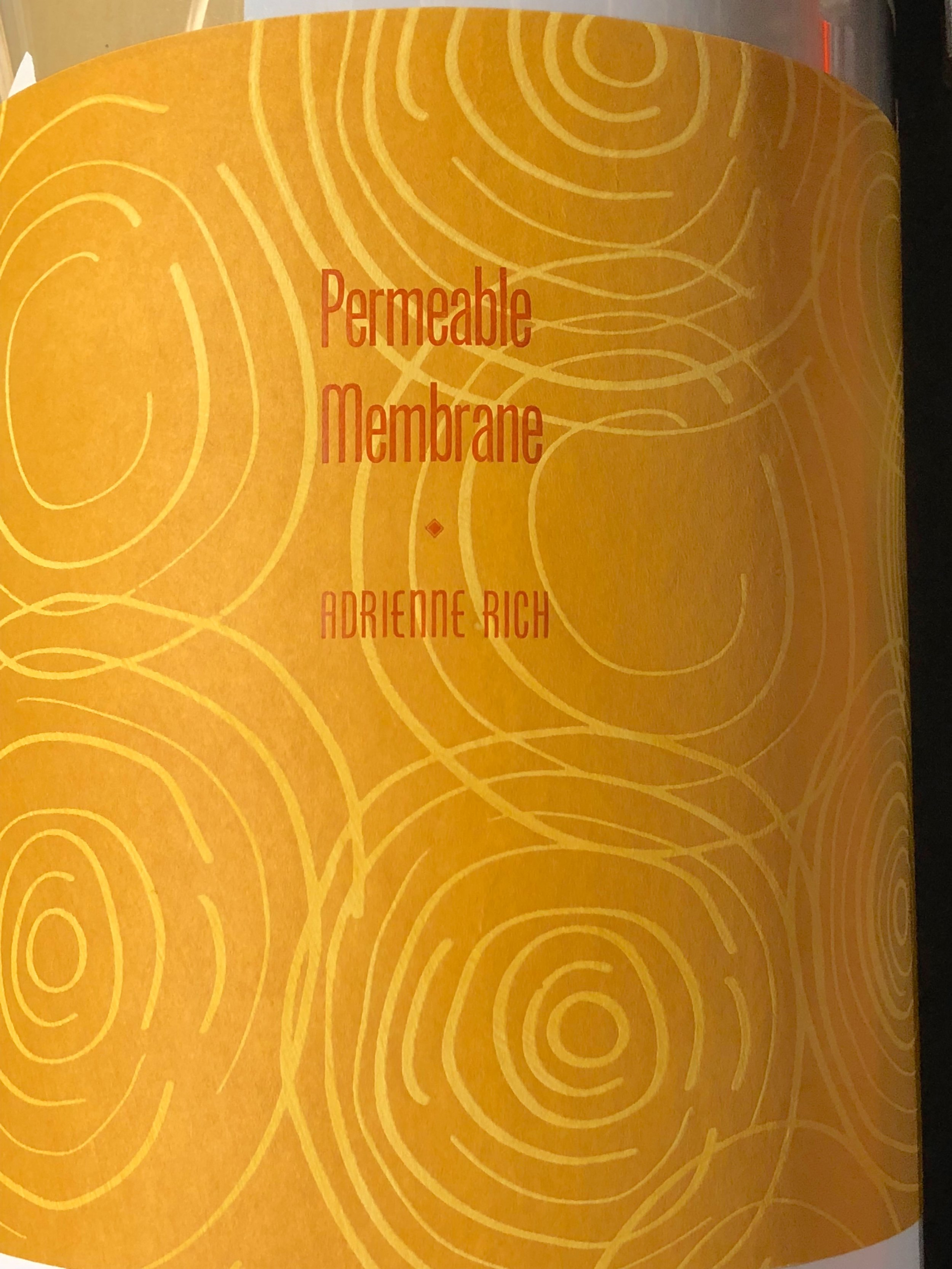 "Jacket for St Brigid Press' edition of Adrienne Rich's essay, printed letterpress on Thai mulberry ""water drops"" paper."