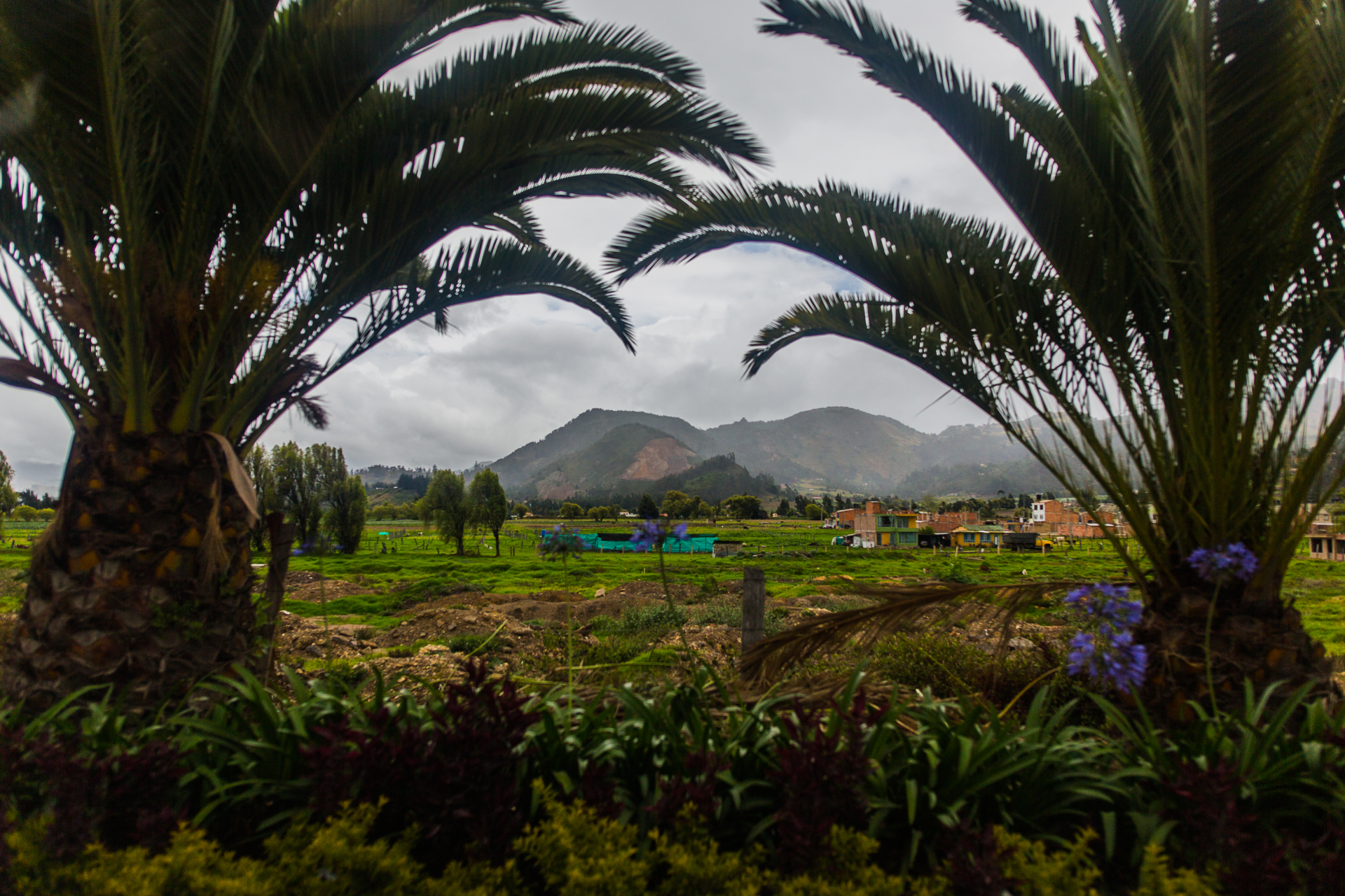 Colombia 2017 (53 of 135).jpg