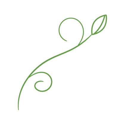Flower_Illustration_02.jpg
