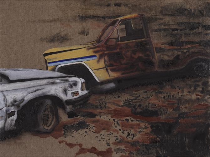 Whitegoods (iii),  2009 Acrylic, oil and enamel on linen 50 x 80cm