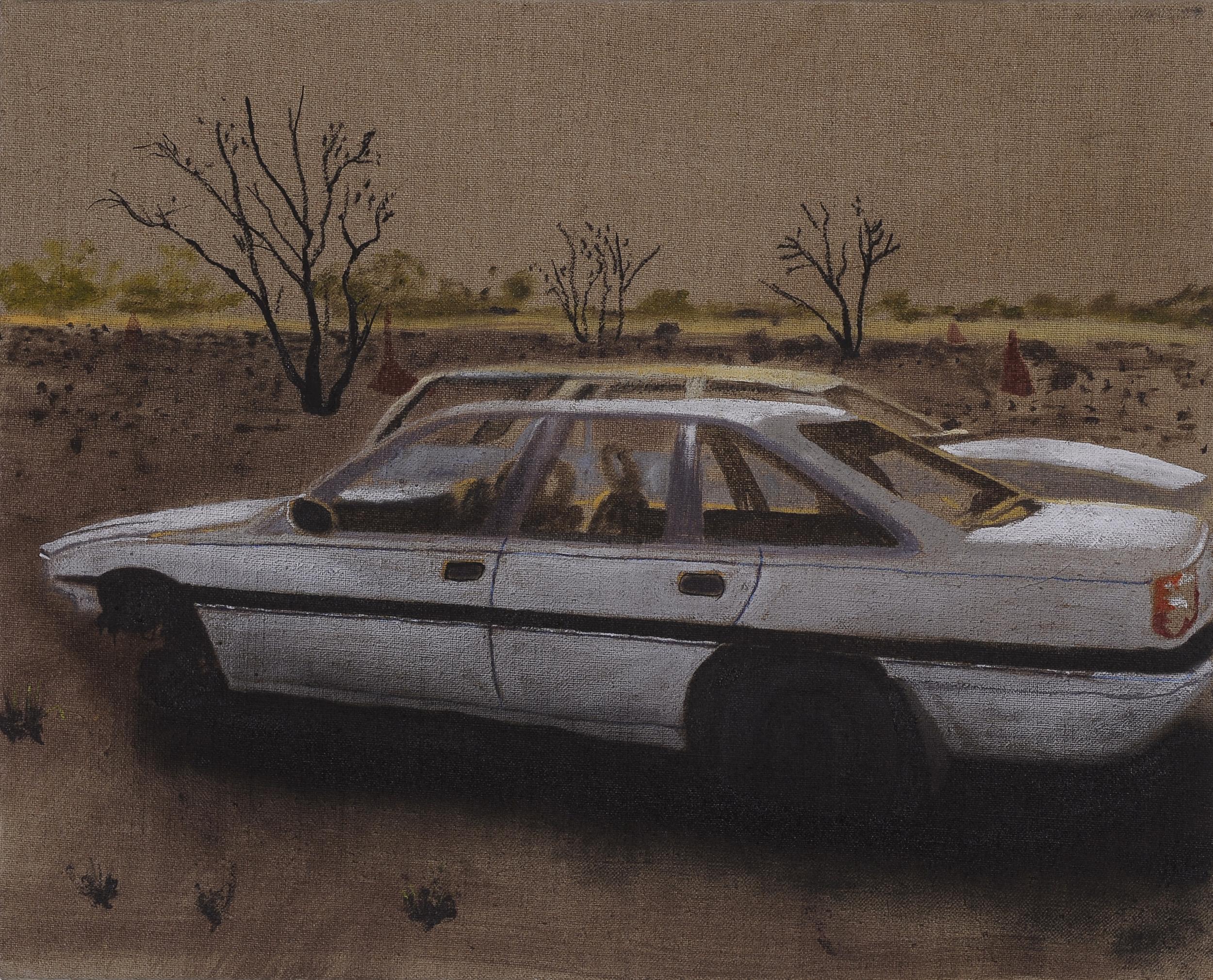 Whitegoods (i),  2009 Acrylic, oil and enamel on linen 50 x 80cm