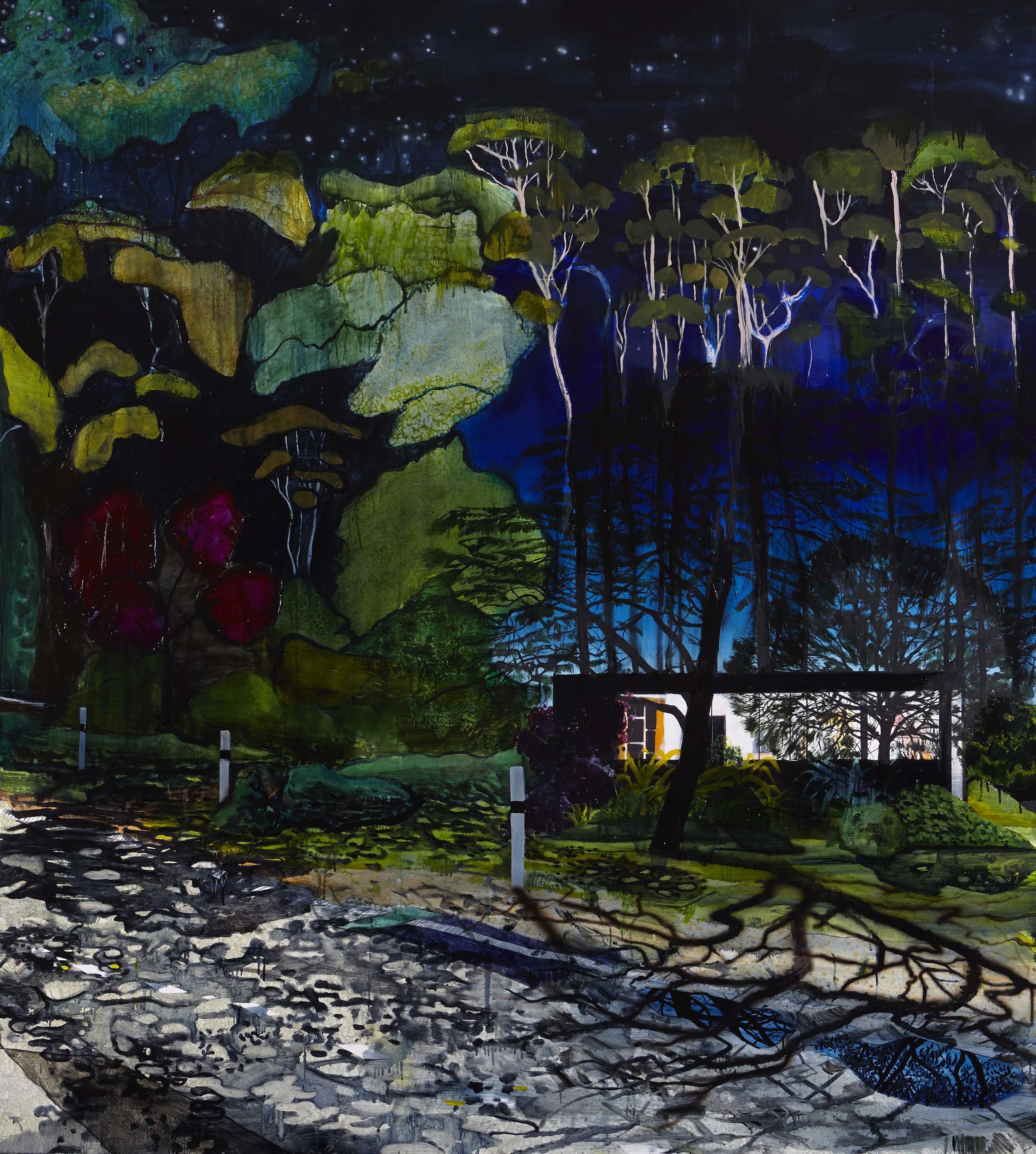 Moonlight (ii),  2014 Acrylic, oil and enamel on linen 200 x 180cm