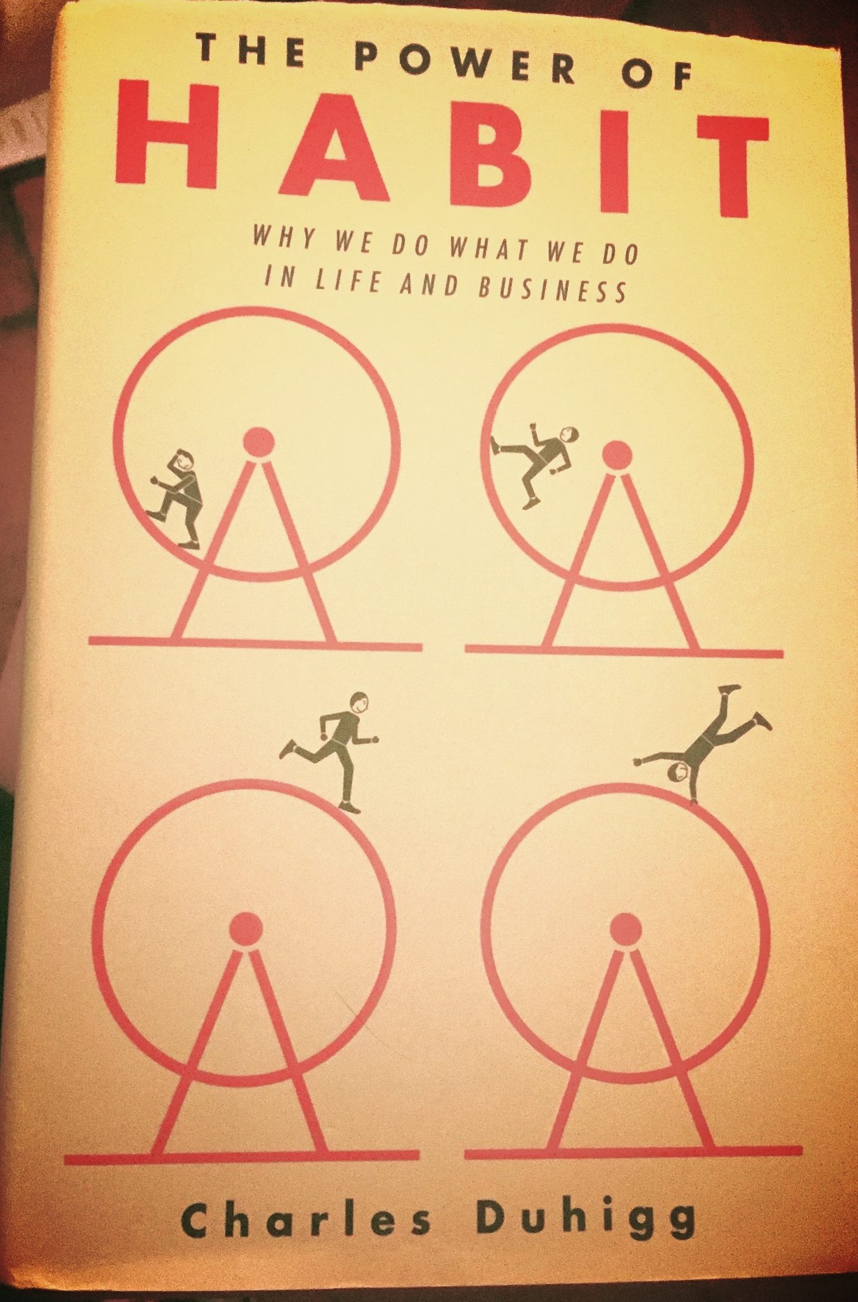 Whether or not you are interested in fitness, this is just an awesome book.