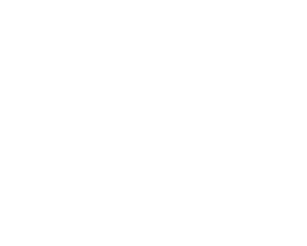 BUTFF_OfficialSelection_2019_white.png