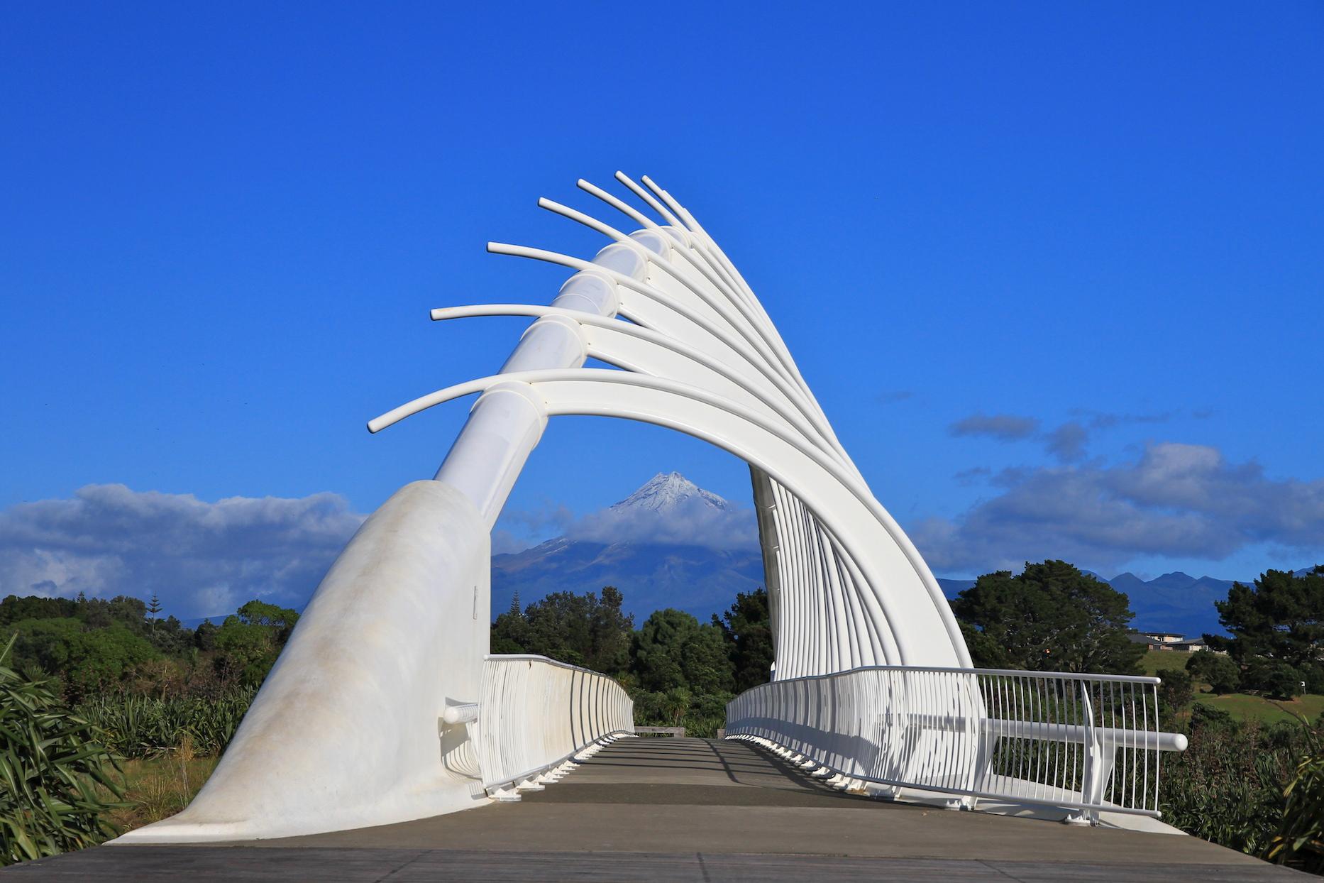 Te Rewa Rewa Bridge sml.jpeg