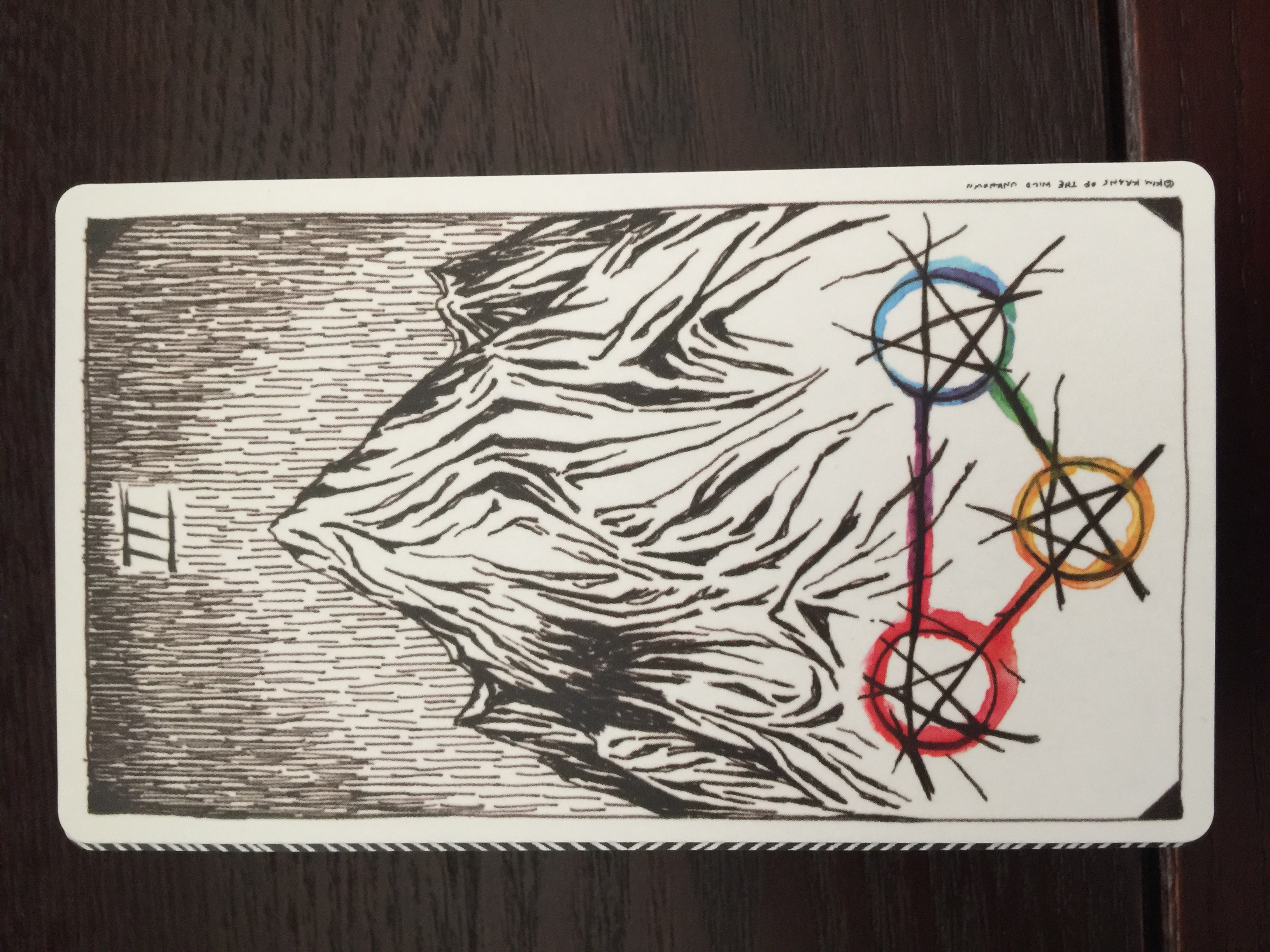 Deck used: The Wild Unknown Tarot