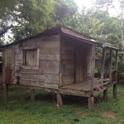 Brenda's House