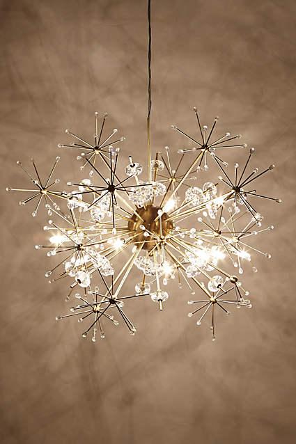 Dandelion Orbit.jpg