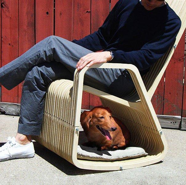 perro-12-mecedora-compartida.jpg