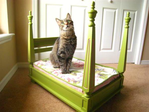 Green-Lovely-Pet-Bed.jpg