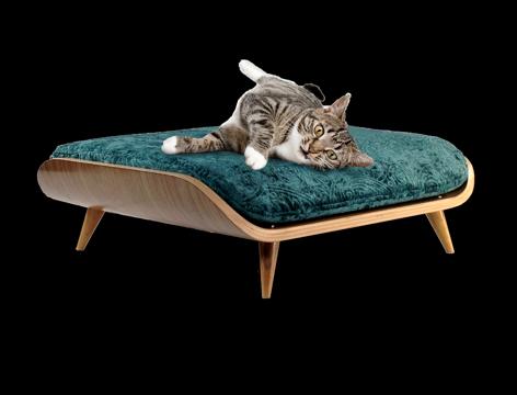 pet_bed_cat.png