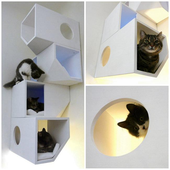 catissa-blanco-casa-gatos.jpg