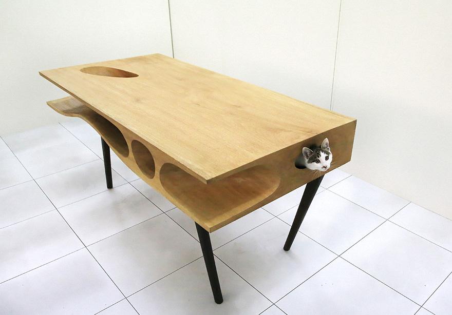 5.-Mesa-con-orificios-para-gato.jpg
