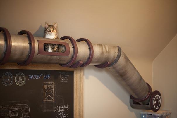 cat-transit-system-1.jpg