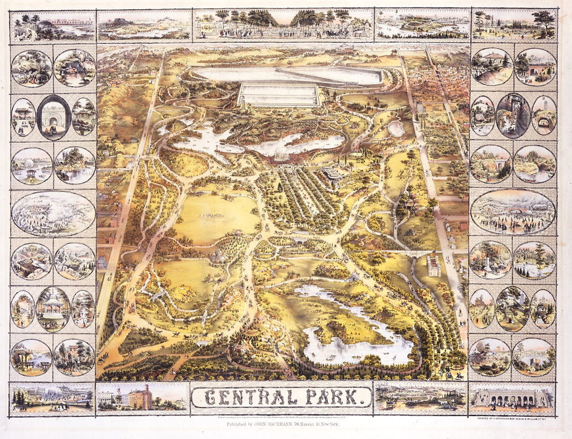 Greenswald:Olmstead and Vaux's awards winning design for Central Park (NY Historical Society)